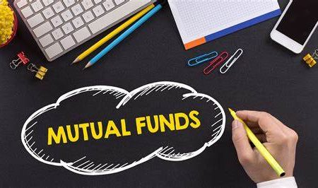 Mutual Fund Investments: Examining Distribution