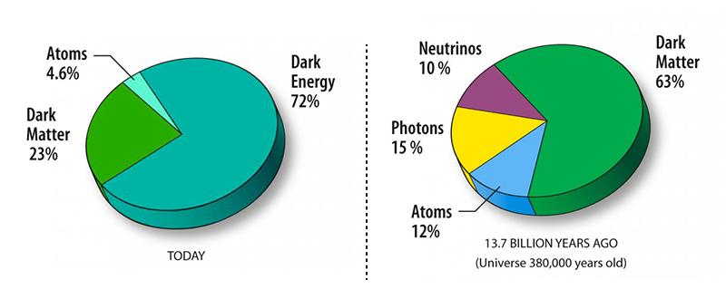 Ayahuasca Chemical Composition