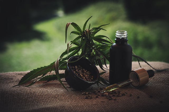 Important Facts To Know About The CBD Oil For Pets Acting As Anxiety-Relief Products