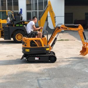 The Availability Of Best Mini Excavator Rental For Fulfilling Multiple Projects And Utilities